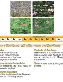 miscela-fiori-semi-piante400x400