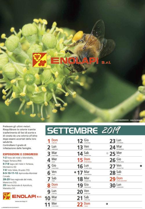 calendario_enolapi11s