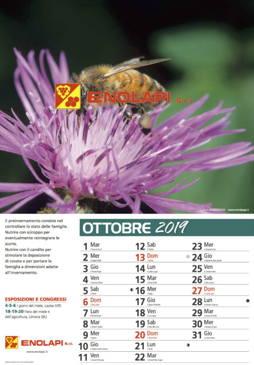 calendario_enolapi 2019