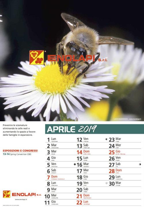 calendario_enolapi6s